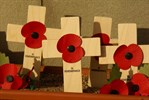 Remembrance crosses.jpg